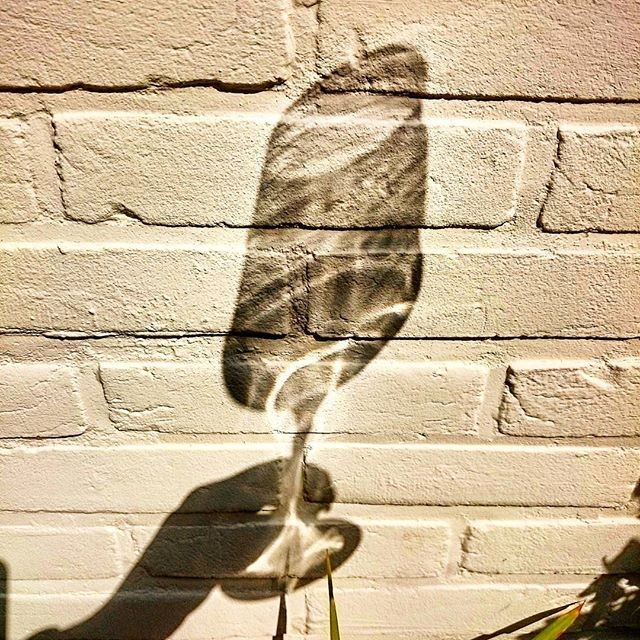 wijnschaduw