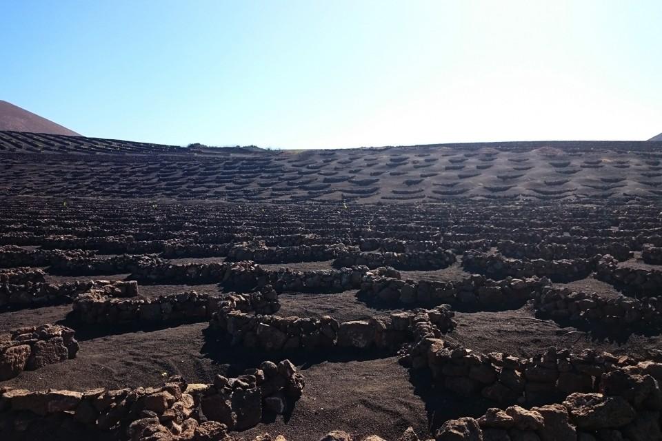 vulkanische wijn op de maan