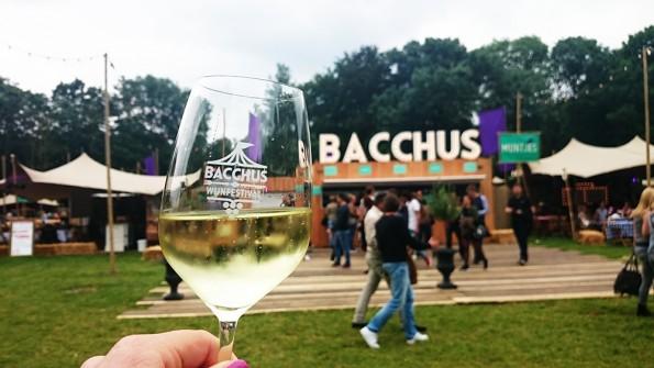 terrein bacchus wijnfestival