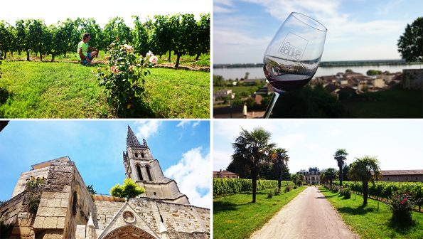 Wijnreis 1 omgeving 2