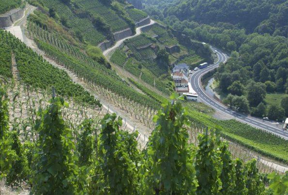 wijngebieden ahr duitsland