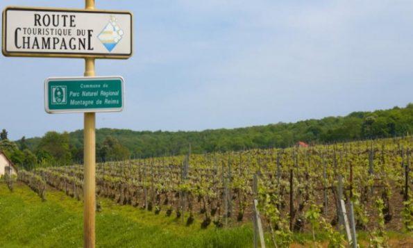 wijngebieden champagne