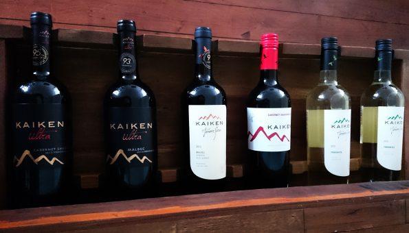Kaiken wines liggend
