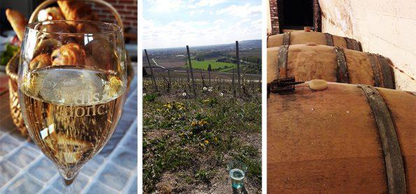 champagne reis overzichtsfoto