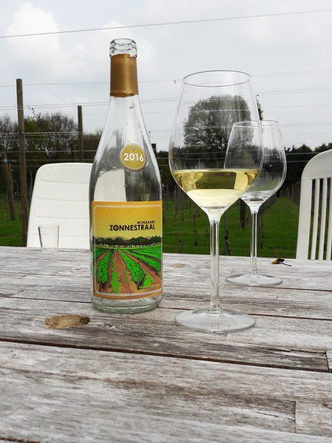 wijngaard hoofdfoto 2