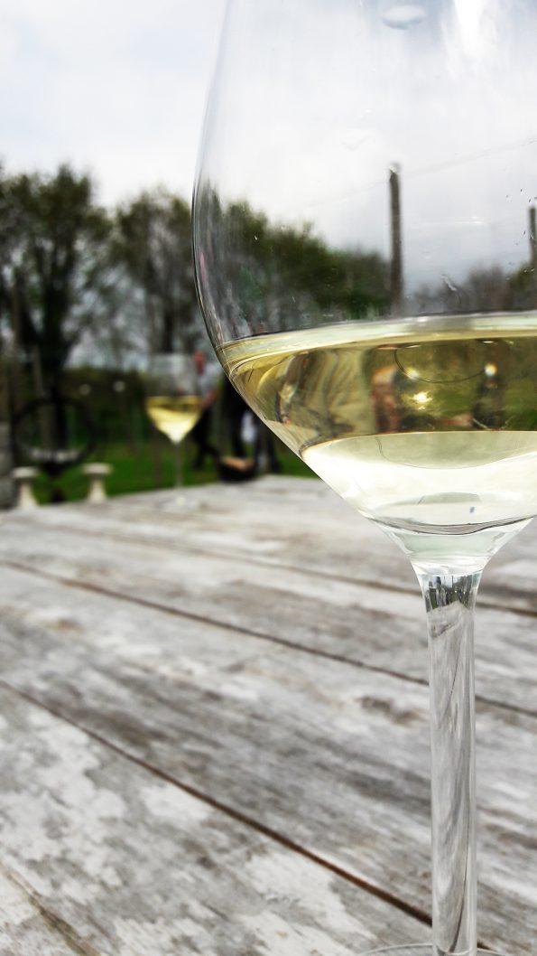 wijngaard hoofdfoto