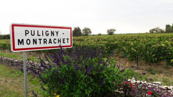 Bourgogne 6