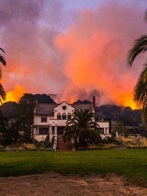 bosbranden californie scribe