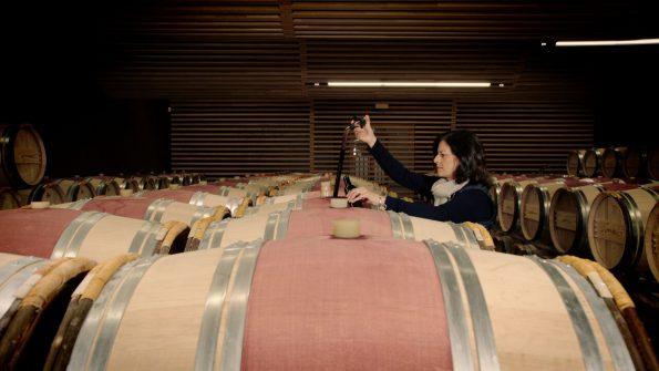 wijnmakers 3