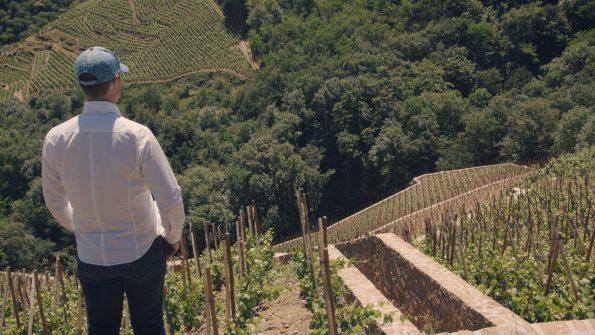 wijnmakers 6