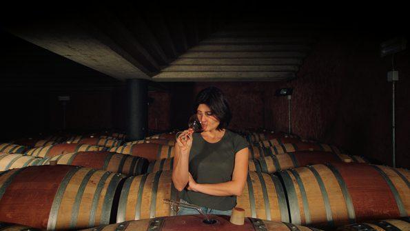 Gaja wine masters