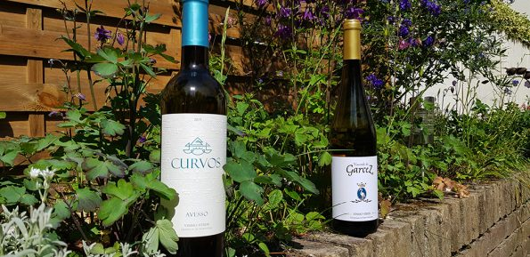 Zomerse wijnen 2
