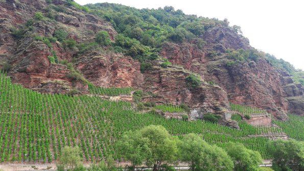 Urzig vulkanische wijn